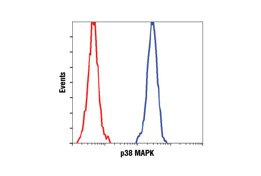 Flow cytometric analysis of HeLa cells using p38 MAPK (D13E1) XP<sup>®</sup> Rabbit mAb (blue) compared to concentration-matched Rabbit (DA1E) mAb IgG XP<sup>®</sup> Isotype Control #3900 (red).
