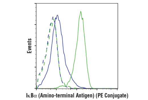 Flow cytometric analysis of HeLa cells, untreated (green) or treated with hTNF-α #8902 and Calyculin A #9902 (20 ng/ml and 100 nM, 15 min; blue), using IκBα (L35A5) Mouse mAb (Amino-terminal Antigen) (PE Conjugate) (solid lines) or concentration-matched Mouse (G3A1) mAb IgG1 Isotype Control (PE Conjugate) #6899 (dashed line).