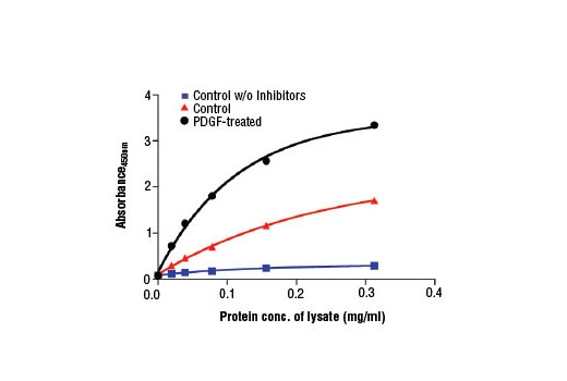 Figure 2. The relationship between protein concentration of lysates from untreated and PDGF-treated NIH/3T3 cells and the absorbance at 450 nm is shown. After starvation, NIH/3T3 cells (85% confluence) were treated with hPDGF-BB #8912 (50 ng/ml) for 10-15 minutes at 37ºC and then lysed.