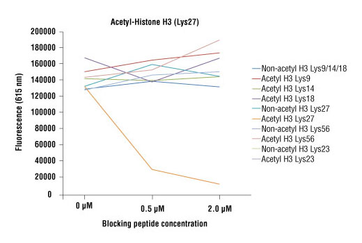Acetyl-Histone H3 (Lys27) (D5E4) XP<sup>®</sup> Rabbit mAb specificity was determined by peptide ELISA. The graph depicts the binding of the antibody to precoated acetyl-histone H3 (Lys27) peptide in the presence of increasing concentrations of various competitor peptides. As shown, only the acetyl-histone H3 (Lys27) peptide competed away binding of the antibody.