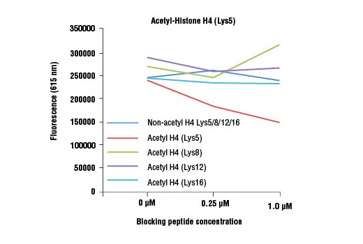 Acetyl-Histone H4 (Lys5) (D12B3) Rabbit mAb specificity was determined by peptide ELISA. The graph depicts the binding of the antibody to pre-coated acetyl-histone H4 (Lys5) peptide in the presence of increasing concentrations of various competitor peptides. As shown, only the acetyl-histone H4 (Lys5) peptide competed away binding of the antibody.
