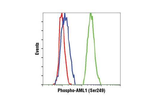 Flow Cytometry Image 1: Phospho-AML1 (Ser249) Antibody