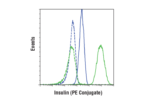 Flow cytometric analysis of Hela cells (blue) and B-TC-6 cells (green) using Insulin (C27C9) Rabbit mAb (PE Conjugate) (solid lines) or a concentration-matched Rabbit (DA1E) mAb IgG XP<sup>®</sup> Isotype Control (PE Conjugate) #5742 (dashed lines).