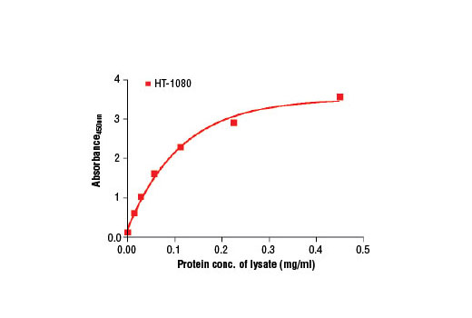 Figure 2. The relationship between protein concentration of lysates from HT-1080 cells and the absorbance at 450 nm is shown. HT-1080 cells (80% confluence) were harvested and then lysed.