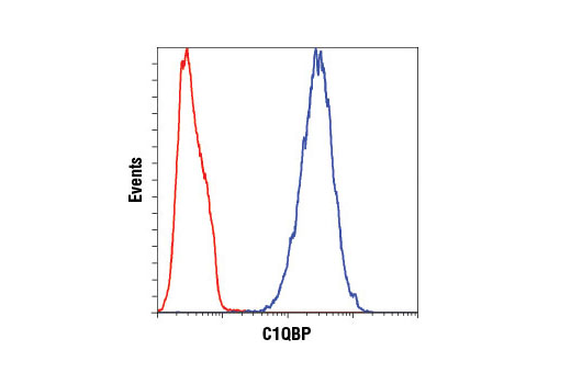 Flow cytometric analysis of Hela cells using C1QBP (D7H12) XP<sup>®</sup> Rabbit mAb (blue) compared to concentration-matched Rabbit (DA1E) mAb IgG XP<sup>®</sup> Isotype Control #3900 (red). Anti-rabbit IgG (H+L), F(ab')<sub>2</sub> Fragment (Alexa Fluor<sup>®</sup> 488 Conjugate) #4412 was used as a secondary antibody.