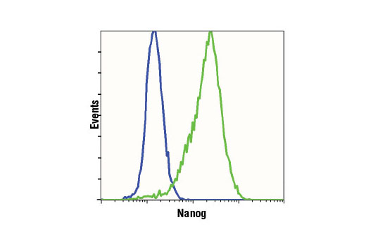 Flow cytometric analysis of NIH/3T3 (blue) and F9 (green) cells using Nanog (D2A3) XP<sup>®</sup> Rabbit mAb (Mouse Specific).