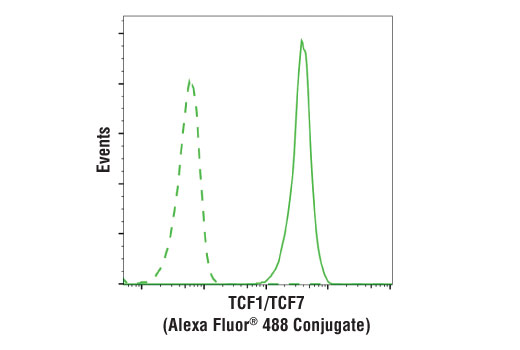 Flow cytometric analysis of Jurkat cells using TCF1/TCF7 (C63D9) Rabbit mAb (Alexa Fluor® 488 Conjugate) (solid line) compared to concentration-matched Rabbit (DA1E) mAb IgG XP® Isotype Control (Alexa Fluor® 488 Conjugate) #2975 (dashed line).