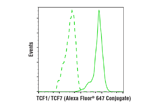 Flow cytometric analysis of Jurkat cells using TCF1/TCF7 (C63D9) Rabbit mAb (Alexa Fluor® 647 Conjugate) (solid line) compared to concentration-matched Rabbit (DA1E) mAb IgG XP® Isotype Control (Alexa Fluor® 647 Conjugate) #2985 (dashed line).