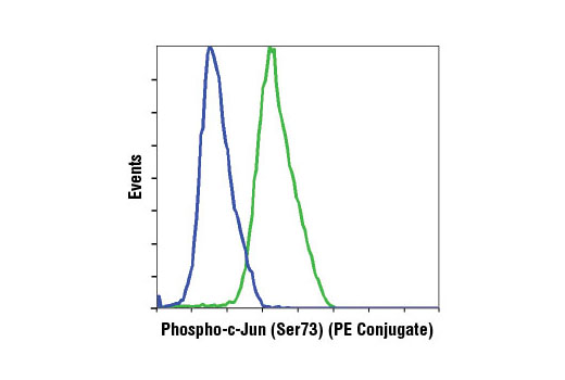 Flow Cytometry Image 1: Phospho-c-Jun (Ser73) (D47G9) XP® Rabbit mAb (PE Conjugate)