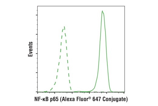 Flow cytometric analysis of Hela cells using NF-κB p65 (D14E12) XP® Rabbit mAb (Alexa Fluor® 647 Conjugate) (solid line) compared to concentration-matched Rabbit (DA1E) mAb IgG XP<sup>®</sup> Isotype Control (Alexa Fluor<sup>®</sup> 647 Conjugate) #2985 (dashed line).