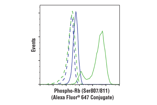 Flow cytometric analysis of BT-549 cells (blue) and Jurkat cells (green) using Phospho-Rb (Ser807/811) (D20B12) XP® Rabbit mAb (Alexa Fluor® 647 Conjugate) (solid lines) or a concentration-matched Rabbit (DA1E) mAb IgG XP<sup>®</sup> Isotype Control (Alexa Fluor<sup>®</sup> 647 Conjugate) #2985 (dashed lines).