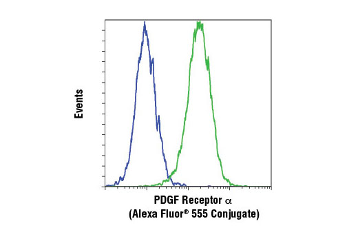 Monoclonal Antibody - PDGF Receptor α (D13C6) XP® Rabbit mAb (Alexa Fluor® 555 Conjugate), UniProt ID P16234, Entrez ID 5156 #8893, Antibodies to Kinases