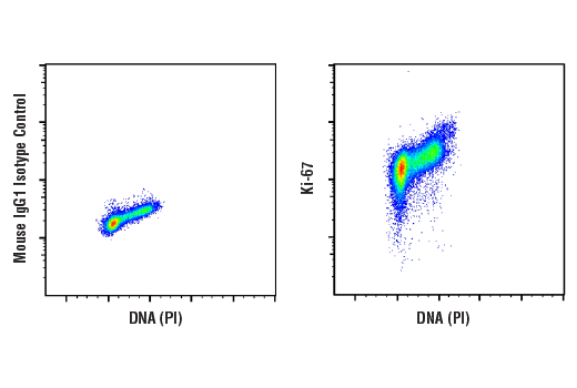 Flow Cytometry Image 1: Ki-67 (8D5) Mouse mAb