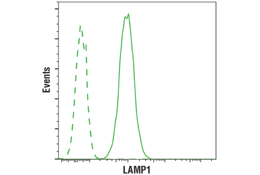 Flow Cytometry Image 1: LAMP1 (D2D11) XP® Rabbit mAb