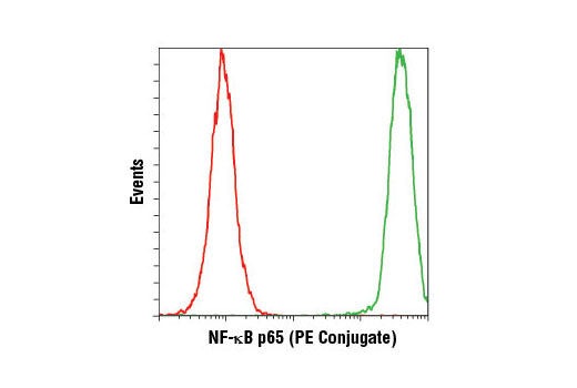 Flow cytometric analysis of HeLa cells using NF-κB p65 (L8F6) Mouse mAb (PE Conjugate) (green) compared to a non-specific isotype control.