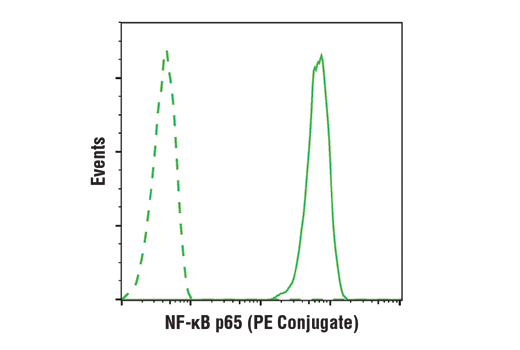 Flow cytometric analysis of Hela cells using NF-κB p65 (D14E12) XP® Rabbit mAb (PE Conjugate) (solid line) compared to concentration-matched Rabbit (DA1E) mAb IgG XP<sup>®</sup> Isotype Control (PE Conjugate) #5742 (dashed line).