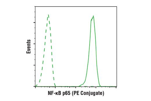 Monoclonal Antibody - NF-κB p65 (D14E12) XP® Rabbit mAb (PE Conjugate), UniProt ID Q04206, Entrez ID 5970 #9609, Nfkb-P65