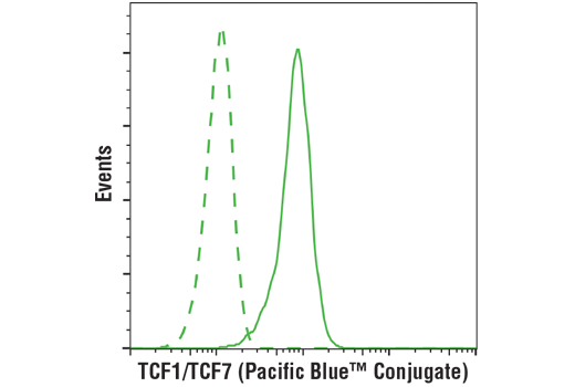 Flow cytometric analysis of Jurkat cells using TCF1/TCF7 (C63D9) Rabbit mAb (Pacific Blue™ Conjugate) (solid line) compared to concentration-matched Rabbit (DA1E) mAb IgG XP® Isotype Control (Pacific Blue™ Conjugate) #9078 (dashed line).