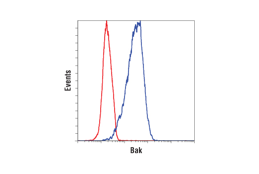 Flow cytometric analysis of SKBR3 cells using Bak (D4E4) Rabbit mAb (blue) compared to concentration-matched Rabbit (DA1E) mAb IgG XP® Isotype Control #3900 (red). Anti-rabbit IgG (H+L), F(ab')2 Fragment (Alexa Fluor® 488 Conjugate) #4412 was used as a secondary antibody.