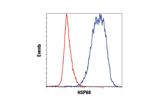 Flow cytometric analysis of HeLa cells using HSP60 (D6F1) XP<sup>®</sup> Rabbit mAb (blue) compared to concentration-matched Rabbit (DA1E) mAb IgG XP<sup>®</sup> Isotype Control #3900 (red). Anti-rabbit IgG (H+L), F(ab')<sub>2</sub> Fragment (Alexa Fluor<sup>®</sup> 488 Conjugate) #4412 was used as a secondary antibody.