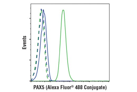 Flow cytometric analysis of Jurkat cells (blue) and Ramos cells (green) using PAX5 (D19F8) XP® Rabbit mAb (Alexa Fluor® 488 Conjugate) (solid lines) or a concentration-matched Rabbit (DA1E) mAb IgG XP<sup>®</sup> Isotype Control (Alexa Fluor<sup>®</sup> 488 Conjugate) #2975 (dashed lines).
