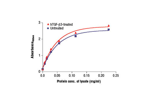 Figure 2. The relationship between the protein concentration of lysates from untreated and TGF-β3-treated HeLa cells and the absorbance at 450 nm as detected by the PathScan<sup>®</sup> Total Smad2/3 Sandwich ELISA Kit is shown. Starved HeLa cells (85% confluence) were treated with 10 ng/ml hTGF-β3 #8425 for 30 min at 37ºC.