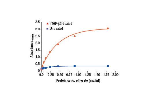 Figure 2. The relationship between the protein concentration of lysates from untreated and TGF-β3-treated HeLa cells and the absorbance at 450 nm as detected by the PathScan<sup>®</sup> Phospho-Smad2 (Ser465/467)/Smad3 (Ser423/425) Sandwich ELISA Kit is shown. Starved HeLa cells (85% confluence) were treated with 10 ng/ml of hTGF-β3 #8425 for 30 min at 37ºC.
