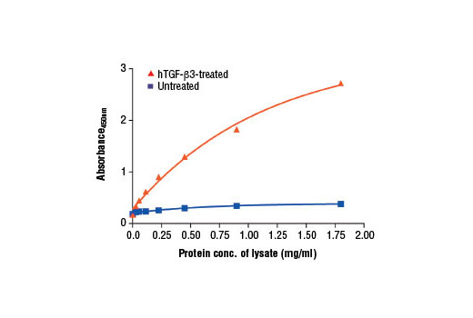 Figure 2. The relationship between the protein concentration of lysates from untreated and TGF-β3-treated HeLa cells and the absorbance at 450 nm as detected by the PathScan<sup>®</sup> Phospho-Smad3 (Ser423/425) Sandwich ELISA Kit is shown. Starved HeLa cells (85% confluence) were treated with 10 ng/ml of hTGF-β3 #8425 for 30 min at 37ºC.
