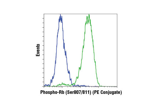 Flow cytometric analysis of BT-549 (blue) and Jurkat (green) cells using Phospho-Rb (Ser807/811) (D20B12) XP<sup>®</sup> Rabbit mAb (PE Conjugate).