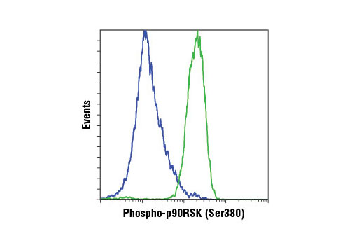 Monoclonal Antibody Flow Cytometry rsk3 ser377 Phosphate