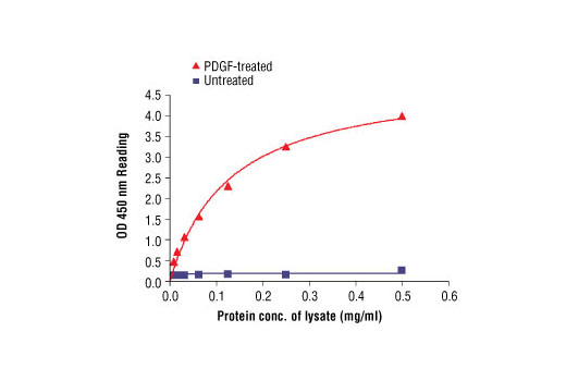 Figure 2: The relationship between protein concentration of lysates from untreated and PDGF-treated NIH/3T3 cells and kit assay optical density readings is shown. After starvation, NIH/3T3 cells (85% confluence) were treated with PDGF (50 ng/ml) for 10 min at 37°C, and then lysed.