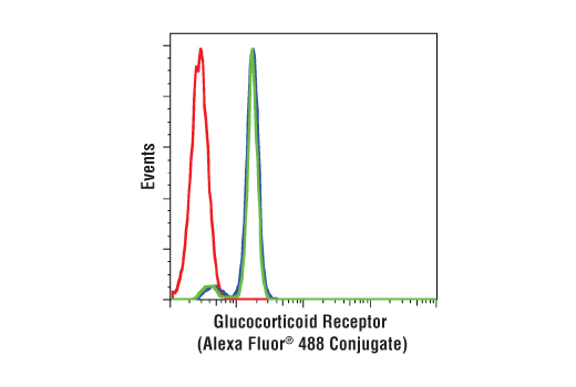 Human whole blood was fixed, lysed, and permeabilized as per the Cell Signaling Technology Flow Cytometry (Alternate) Protocol and stained with CD3-PE, CD19-APC and Glucocorticoid Receptor (D8H2) XP® Rabbit mAb (Alexa Fluor® 488 Conjugate). CD3 (blue) and CD19 (green) population gates were applied to a histogram depicting the mean fluorescence intensity of glucocorticoid and compared to Rabbit (DA1E) mAb IgG XP® Isotype Control (Alexa Fluor<sup>®</sup> 488 Conjugate) #2975 (red).