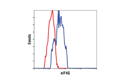 Monoclonal Antibody Flow Cytometry Translation Initiation Factor Activity - count 9