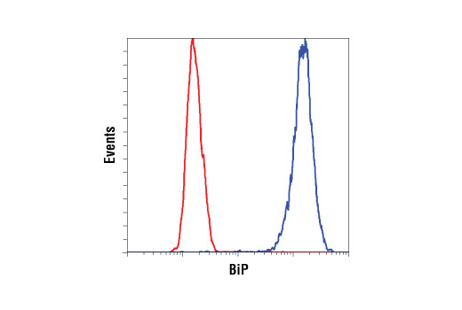 Flow Cytometry Image 23
