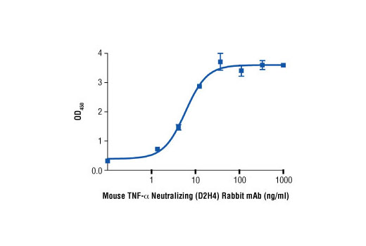 The ability of Mouse TNF-α Neutralizing (D2H4) Rabbit mAb to inhibit mTNF-α-induced L-929 cell cytotoxicity was assessed. Cells were incubated with increasing concentrations of antibody in the presence of mTNF-α #5178 (250 pg/ml) and 1 µg/ml actinomycin D. After 24 hr, viable cells were detected by incubation with a tetrazolium salt and the OD<sub>450</sub> was determined.