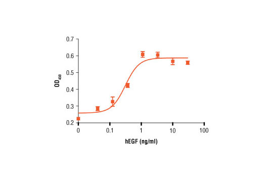 Monoclonal Antibody Neutralizing Regulation of Cell Proliferation
