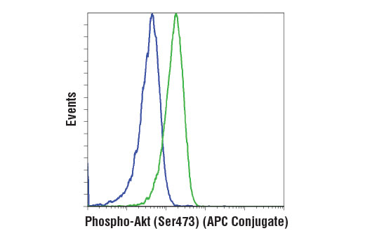Flow cytometric analysis of Jurkat cells, untreated (green) or treated with LY294002 #9901, Wortmannin #9951, and U0126 #9903 (blue), using Phospho-Akt (Ser473) (D9E) XP<sup>®</sup> Rabbit mAb (APC Conjugate).