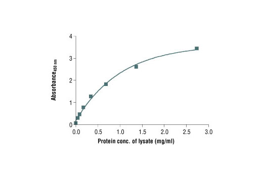 Figure 2: The relationship between protein concentration of lysates from 293 cells and the absorbance<sub>450 nm</sub> is shown.