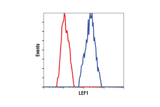 Flow cytometric analysis of untreated Jurkat cells using LEF1 (C12A5) Rabbit mAb (blue) compared to a nonspecific negative control antibody (red).