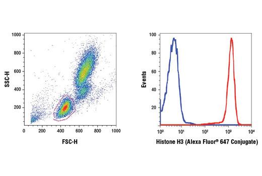 Monoclonal Antibody - Histone H3 (D1H2) XP®Rabbit mAb(Alexa Fluor®647 Conjugate), UniProt ID P68431, Entrez ID 8350 #12230