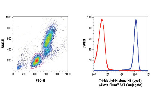 Monoclonal Antibody Flow Cytometry H3 (Lys4) Trimethylate