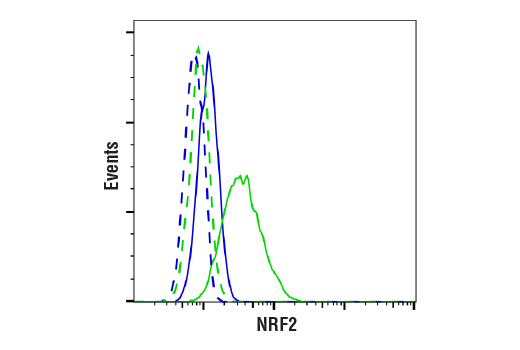 Flow Cytometry Image 1: NRF2 (D1Z9C) XP® Rabbit mAb