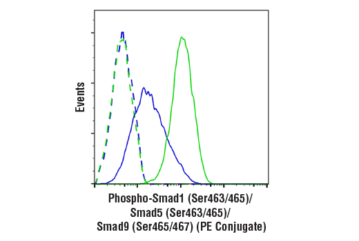 Flow cytometric analysis of HT-1080 cells, untreated (blue) or treated with hBMP2 (100 ng/ml, 30 min; green) using Phospho-Smad1 (Ser463/465)/ Smad5 (Ser463/465)/ Smad9 (Ser465/467) (D5B10) Rabbit mAb (PE Conjugate) (solid lines) or concentration-matched Rabbit (DA1E) mAb IgG XP<sup>®</sup> Isotype Control (PE Conjugate) #5742 (dashed lines).
