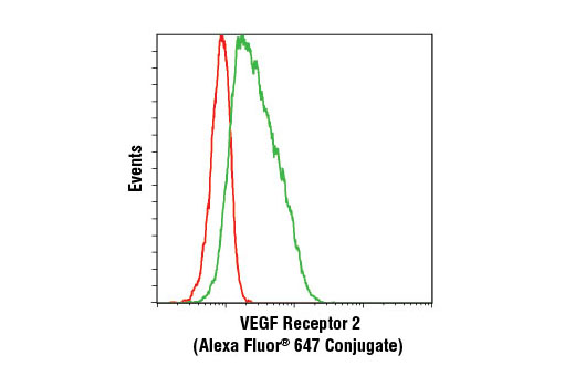 Monoclonal Antibody Flow Cytometry vegfr2