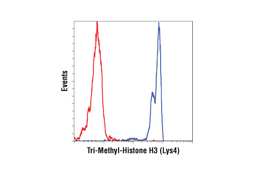 Flow cytometric analysis of human whole blood cells using Tri-Methyl-Histone H3 (Lys4) (C42D8) Rabbit mAb (blue) and Rabbit (DA1E) mAb IgG XP<sup>®</sup> Isotype Control #3900 (red). Anti-rabbit IgG (H+L), F(ab')<sub>2</sub> Fragment (Alexa Fluor<sup>®</sup> 647 Conjugate) #4414 was used as a secondary antibody. Analysis was performed on cells in the lymphocyte gate.