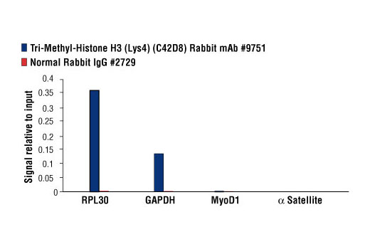 Image 11: Methyl-Histone H3 (Lys4) Antibody Sampler Kit