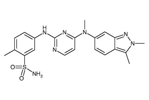 Chemical Modulators - Pazopanib - 10 mg #12466, Companion Products