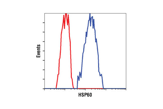 Flow cytometric analysis of HeLa cells using HSP60 (D85) Antibody (blue) compared to a nonspecific negative control antibody (red).
