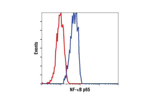 Flow cytometric analysis of OVCAR8 cells using NF-κB p65 (C22B4) Rabbit mAb (blue) compared to a nonspecific negative control antibody (red).