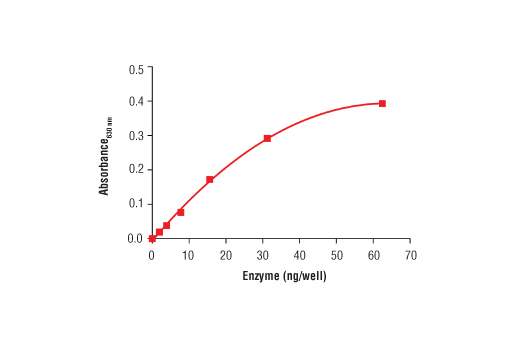 Phosphatase Assay Image 2